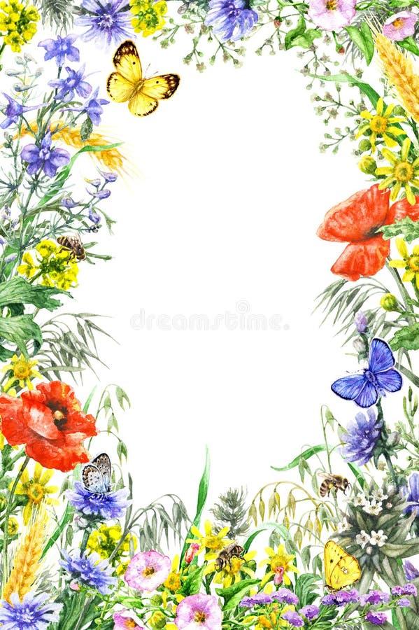 水彩野花框架 向量例证