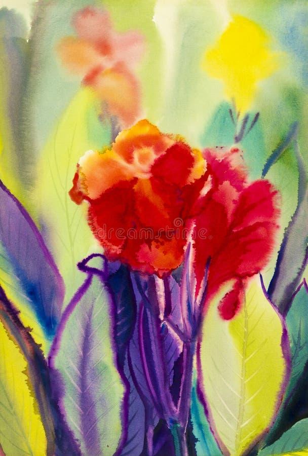 水彩风景原始的绘画五颜六色canna百合花 皇族释放例证