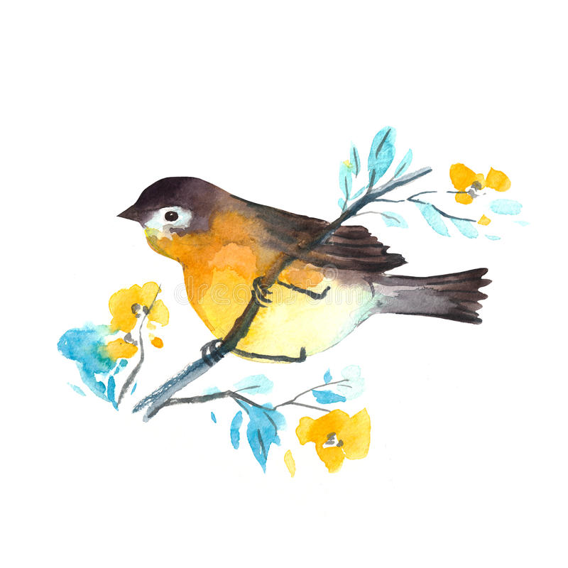 水彩鸟-罗宾 五颜六色的水彩例证 查出在白色 库存例证