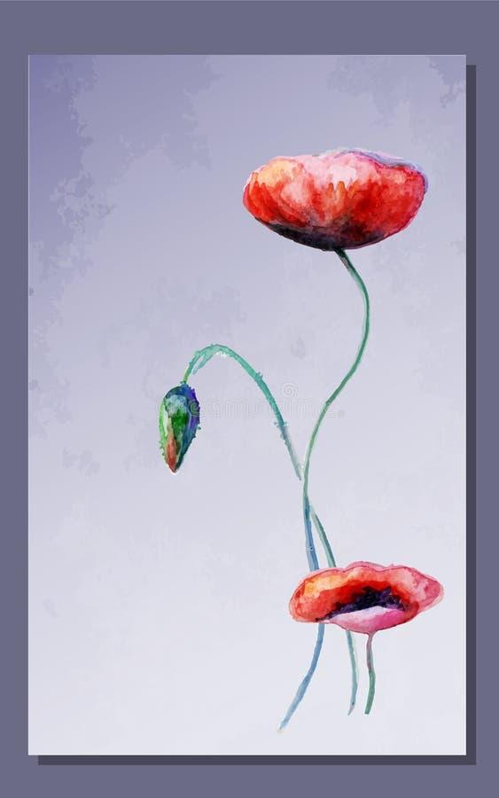 水彩鸦片开花卡片 向量例证
