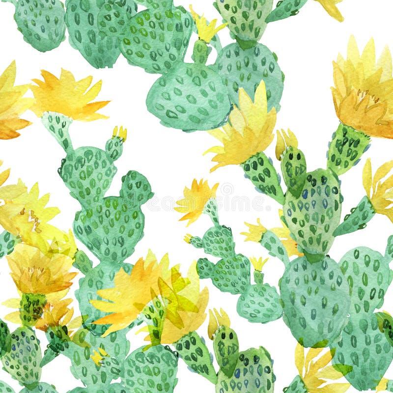 水彩仙人掌,热带花,无缝的花卉样式背景 库存例证