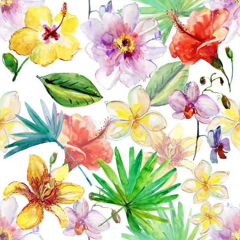 水彩 在白色背景的手画花卉无缝的背景例证 库存例证