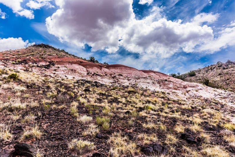 彩绘沙漠,亚利桑那风景  免版税库存照片