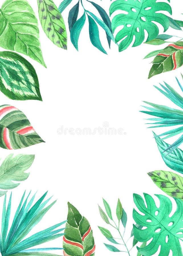 水彩绿色热带卡片模板 库存例证