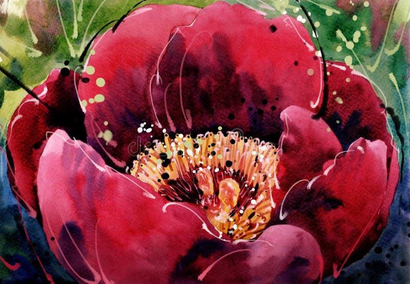 水彩绘画郁金香选拔红色花 皇族释放例证