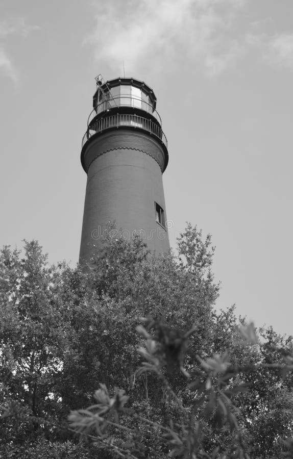 彭萨科拉灯塔骄傲地站立高在树上 库存照片