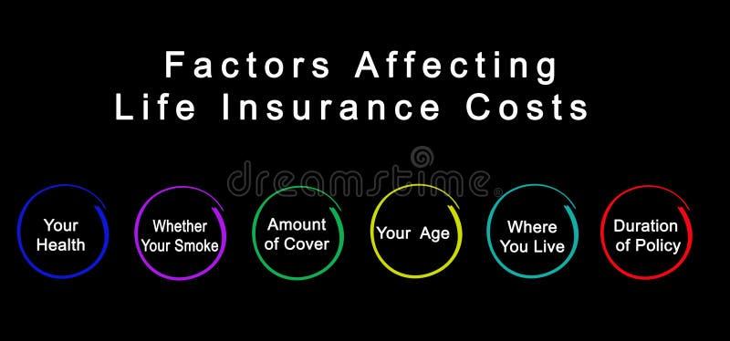 影响人寿保险费用的因素 向量例证
