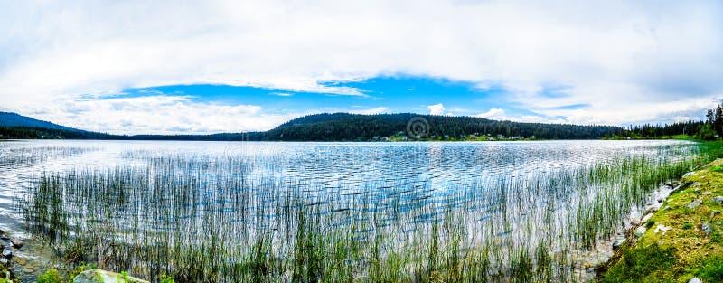 彼得Shuswap高地的Hope湖全景视图在不列颠哥伦比亚省,加拿大 库存图片