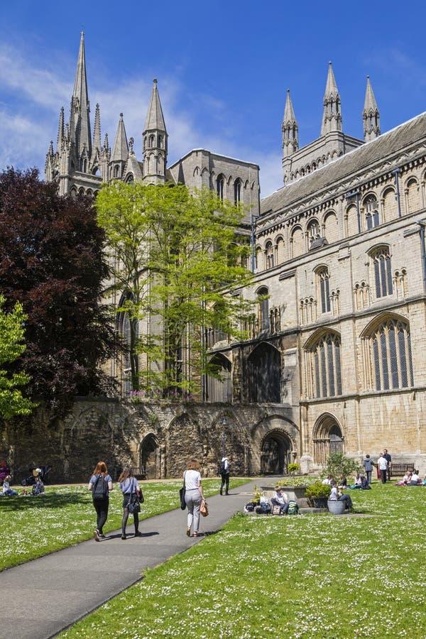 彼德伯勒大教堂在英国 库存图片