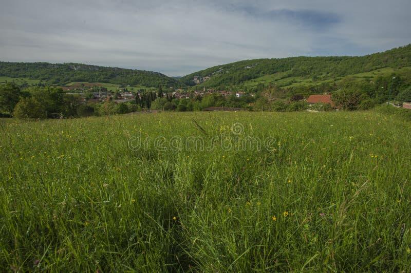 往山坡的看法从有野花的绿色草甸 免版税库存照片