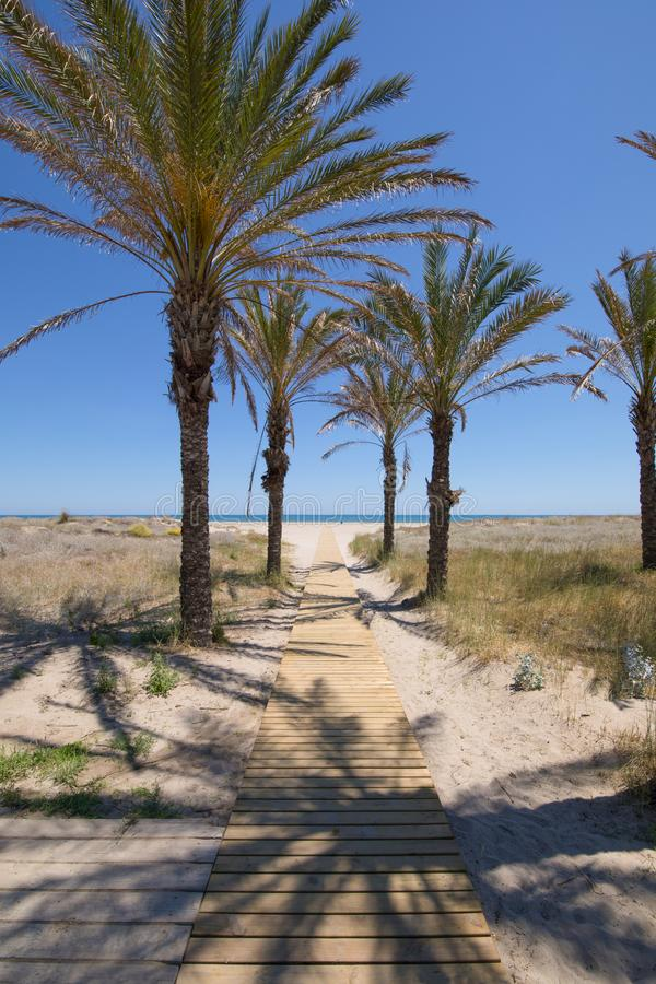 往杉木海滩的木走道在Grao垂直 库存照片