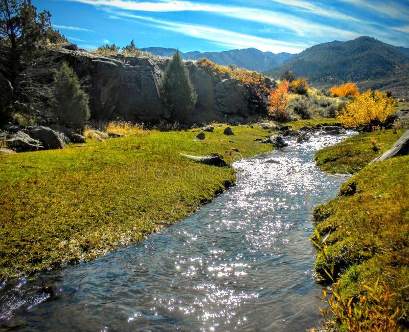 往Wasatch山的犹他峡谷供徒步旅行的小道 免版税库存图片