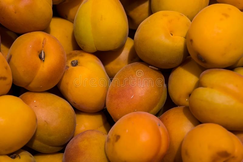 很多杏子在桌,成熟杏子上驱散 免版税库存照片