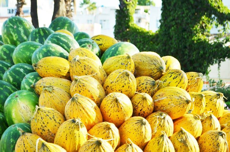 很多瓜和西瓜 博德鲁姆,土耳其 库存照片