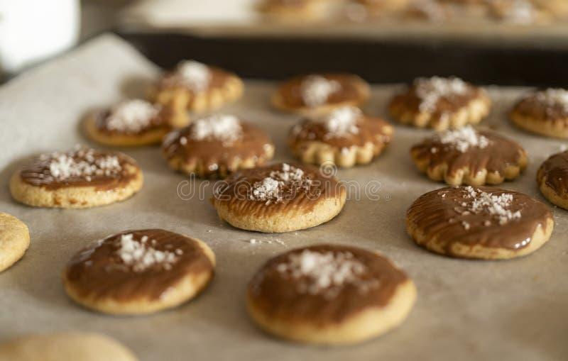 很多被烘烤的曲奇饼和姜饼在烘烤的盘子,装饰用巧克力和椰子剥落 库存照片