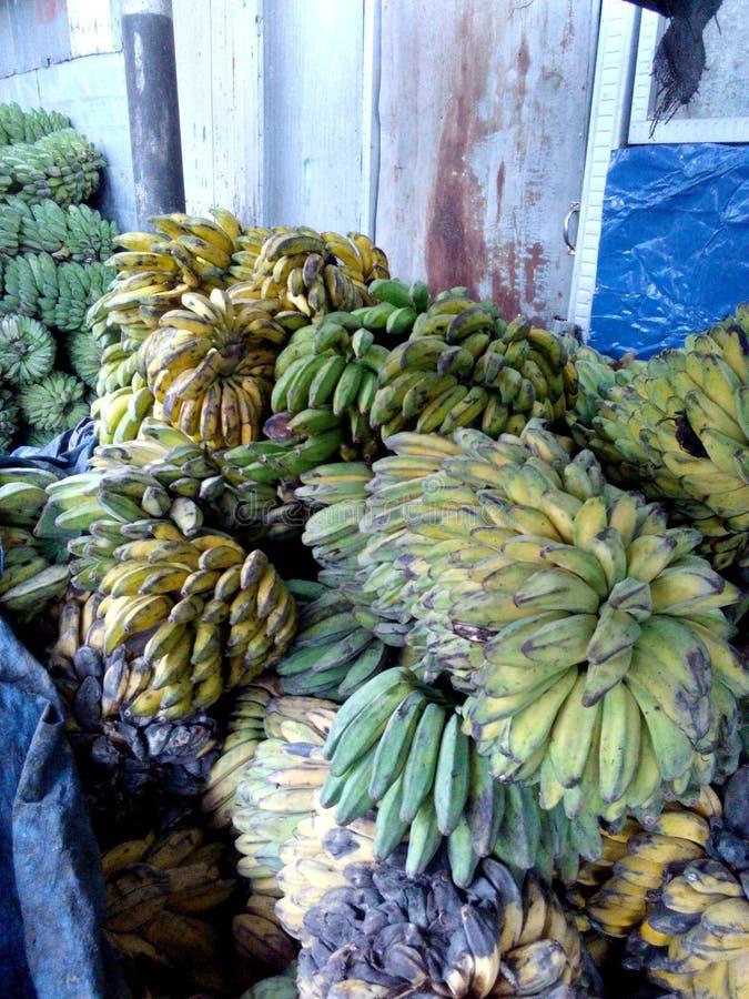 很多香蕉 免版税库存照片