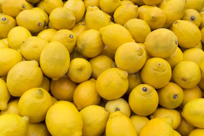 很多黄色柠檬 库存图片