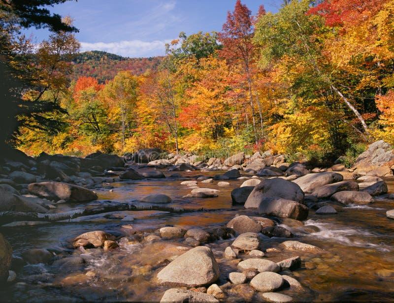 很快秋天hamsphire新的河 免版税库存图片