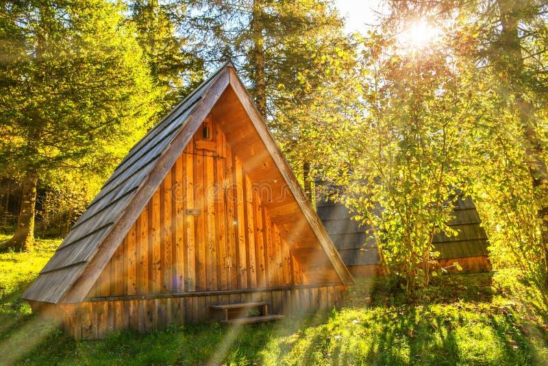 很远在一个深绿森林掩藏的小自然木房子在一晴朗的早晨天 图库摄影