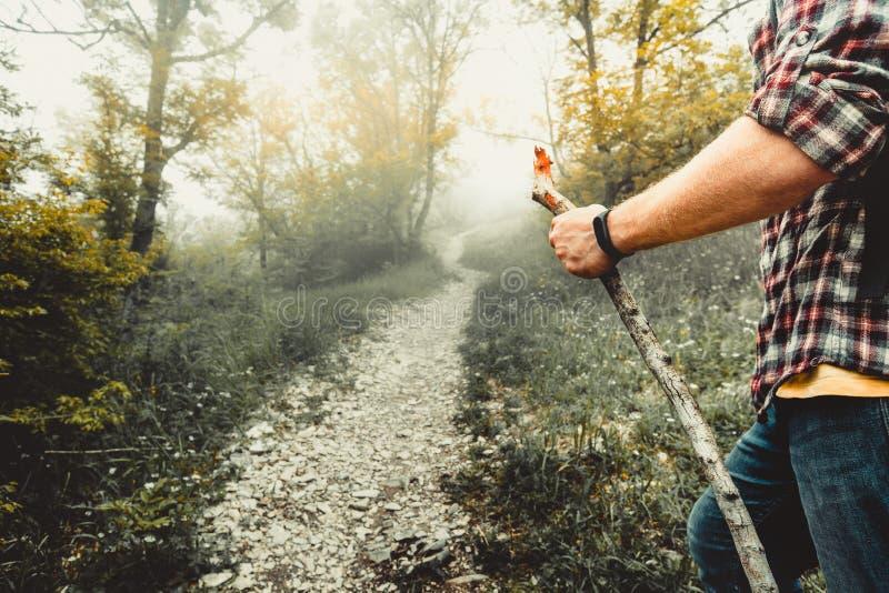徒步旅行者走森林公路 冒险,远足,冒险,生活方式概念 免版税库存照片