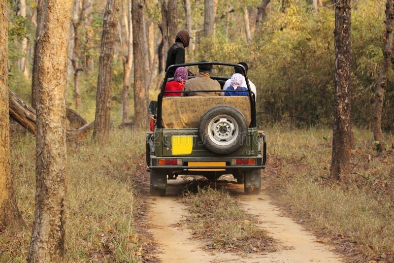 徒步旅行队吉普在深森林里 库存照片