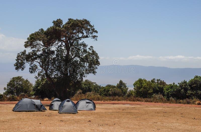 徒步旅行队狂放的露营地在塔兰吉雷国家公园,坦桑尼亚,非洲 免版税库存图片