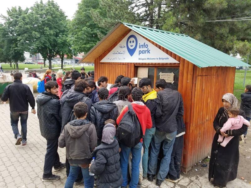 得到帮助的叙利亚难民在贝尔格莱德,塞尔维亚 免版税库存照片