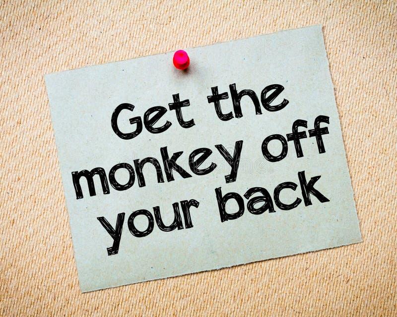 得到您的后面猴子  免版税库存照片