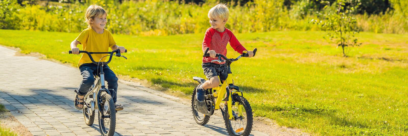 循环在公园横幅,长的格式的两个愉快的男孩 免版税库存照片