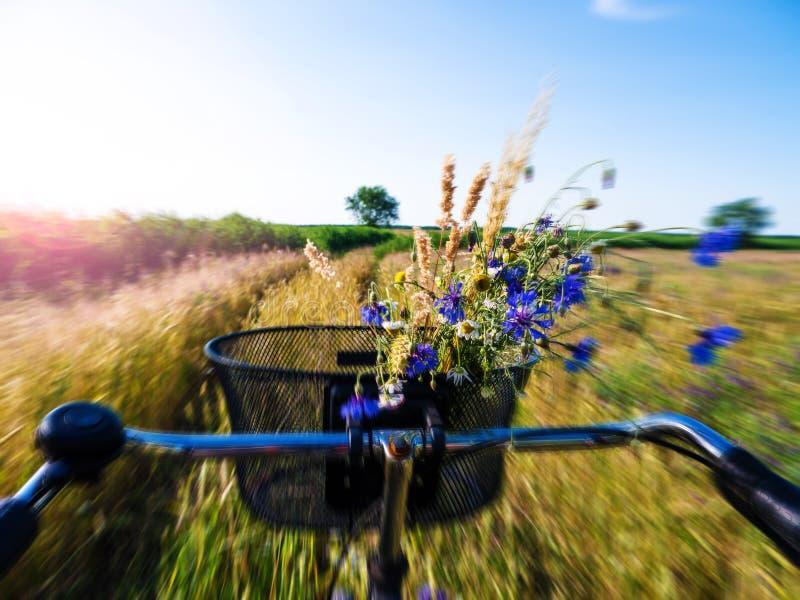 循环在领域 免版税图库摄影
