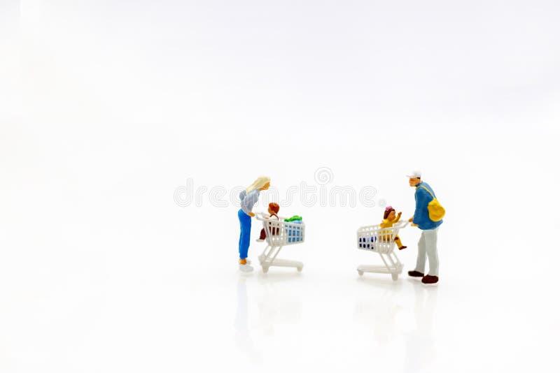 微型人民:家庭和孩子有购物车的 Concep 图库摄影