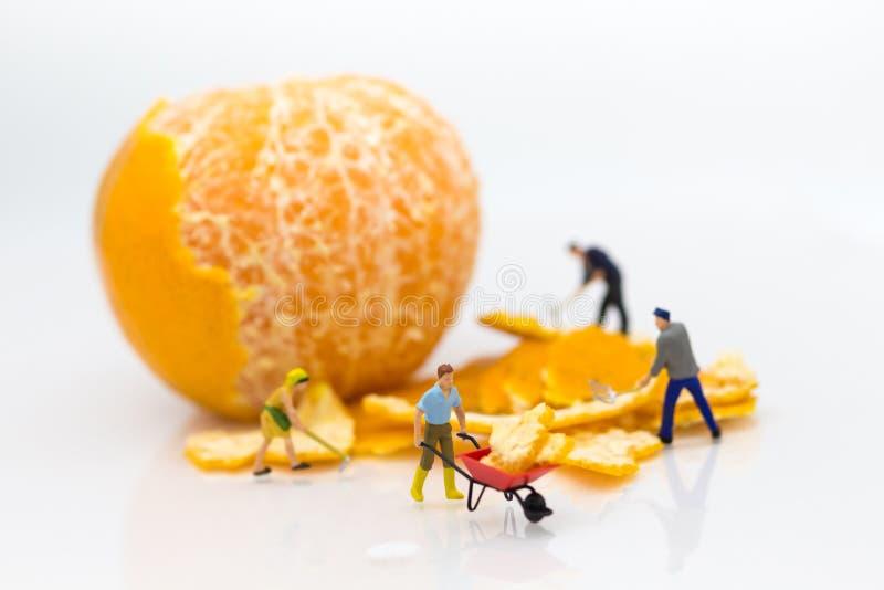 微型人民:工作者剥橙皮 配合的,企业概念图象用途 免版税库存照片