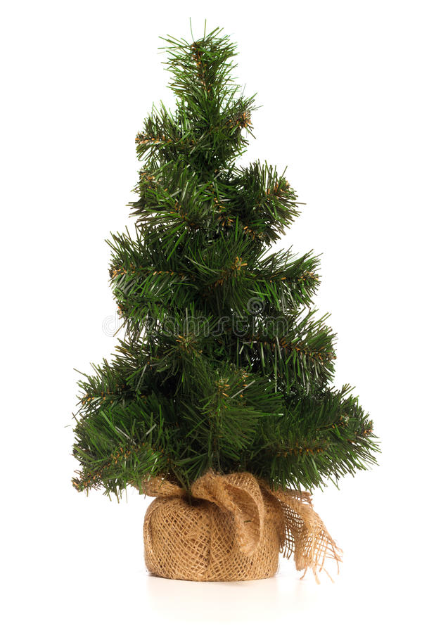 微型假圣诞树 免版税库存图片