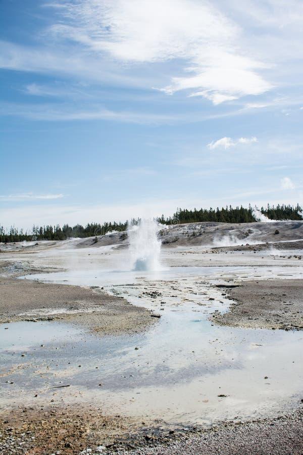 微型喷泉爆发 免版税库存图片