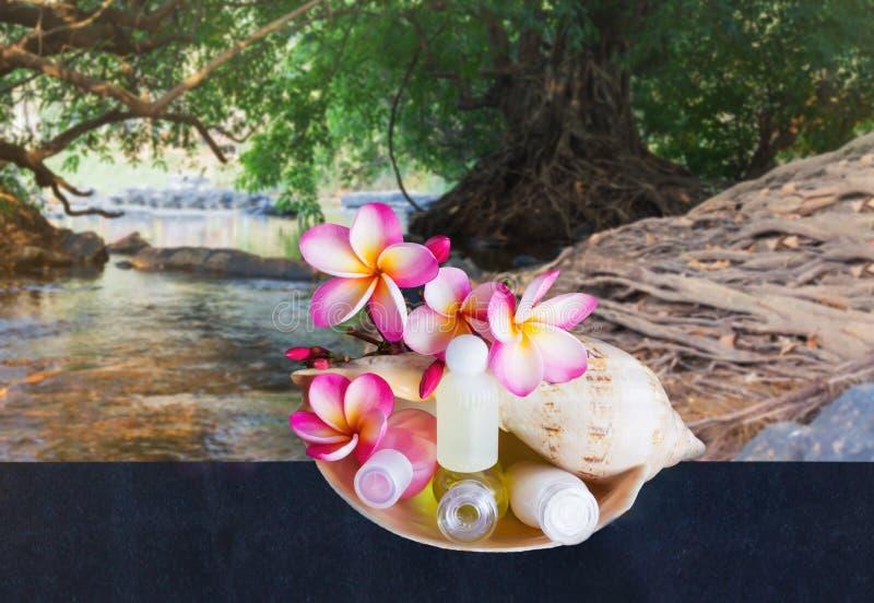 微型套与花的泡末浴阵雨在海巧克力精炼机壳a 免版税库存照片