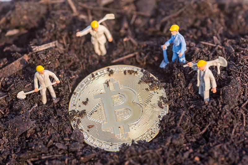 微型工作者人民发现在土壤的金bitcoin农业 免版税库存照片