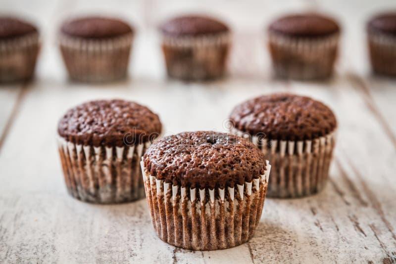 微型巧克力果仁巧克力杯形蛋糕 免版税图库摄影