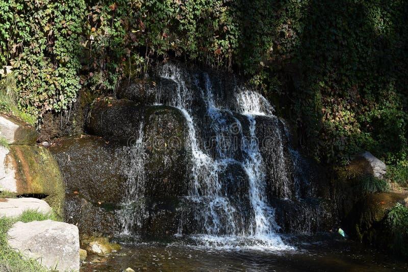 微型瀑布在公园 库存照片