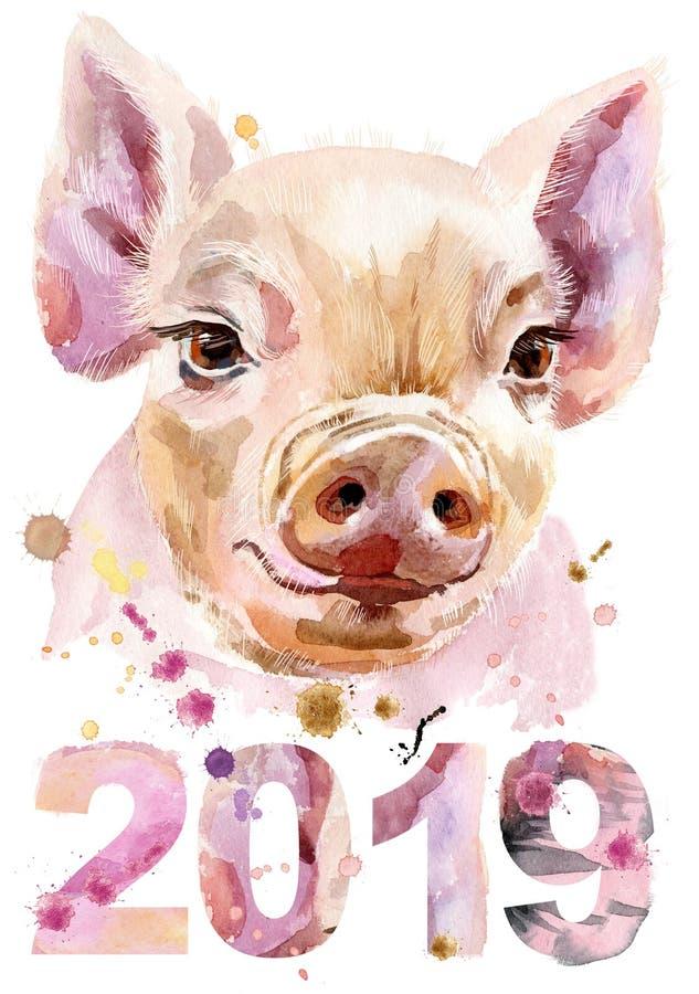微型猪水彩画象与年2019年. 字符, 滑稽.图片