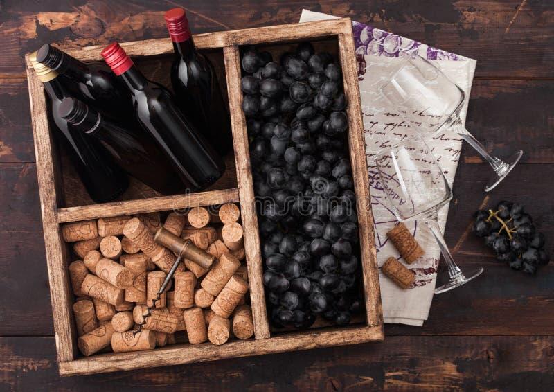 微型瓶红酒和空的玻璃用黑暗的葡萄与黄柏和拔塞螺旋在葡萄酒木箱里面在黑暗木 免版税库存图片