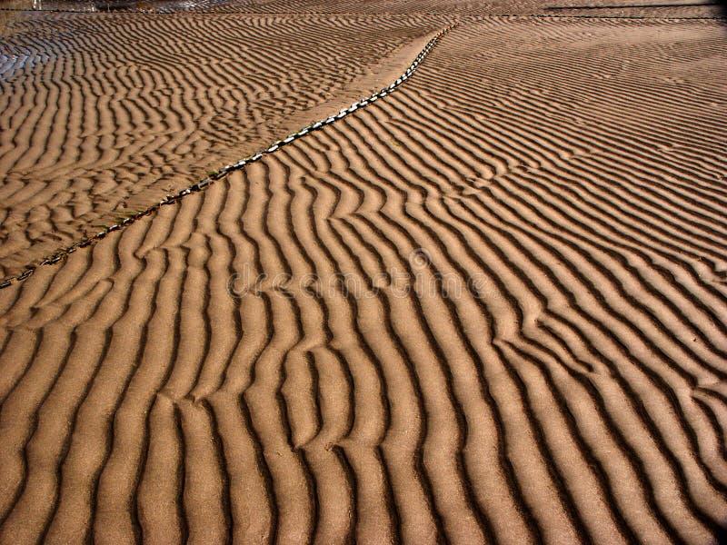 微型的沙丘 免版税图库摄影