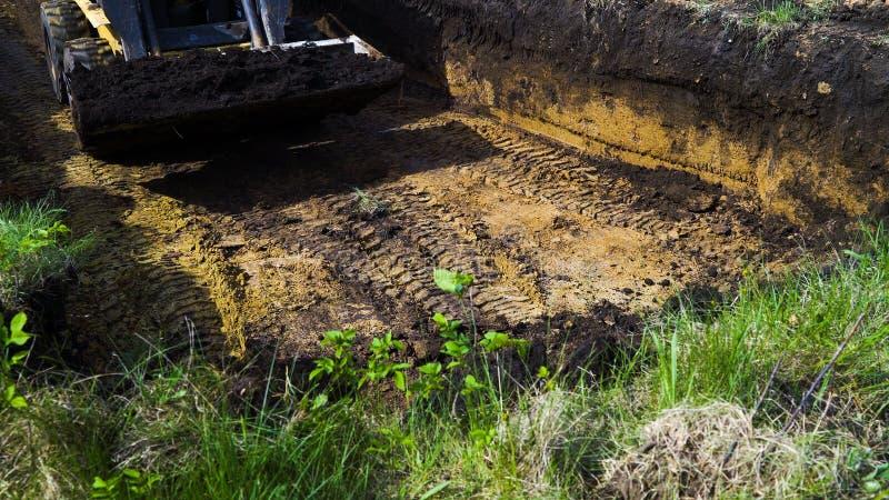 微型装载者播种的看法在象草的区域的挖掘工作在乡下 免版税库存图片