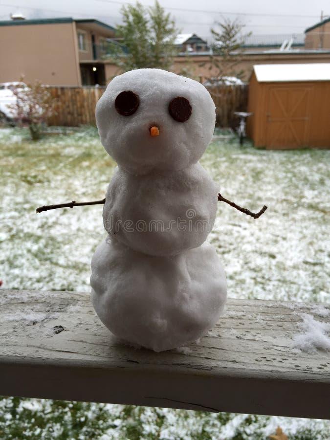 微型雪人 免版税库存照片