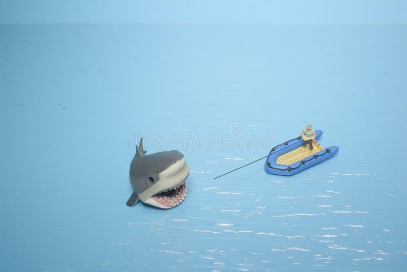 微型鲨鱼图乐趣  库存照片