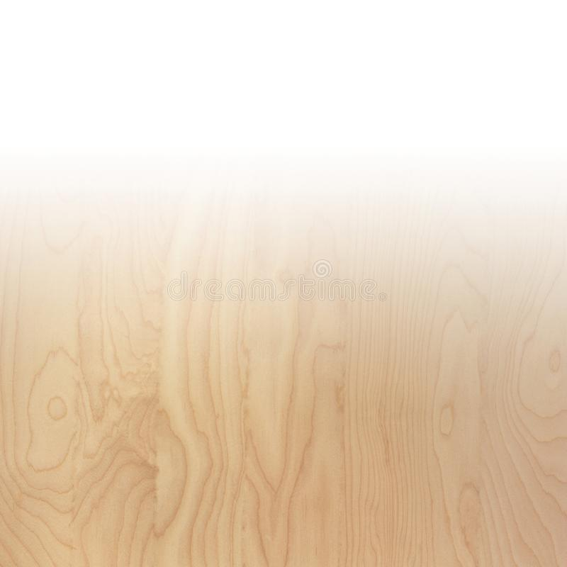 微妙的棕褐色的光滑的自然桦树木头五谷抽象背景表面 免版税图库摄影