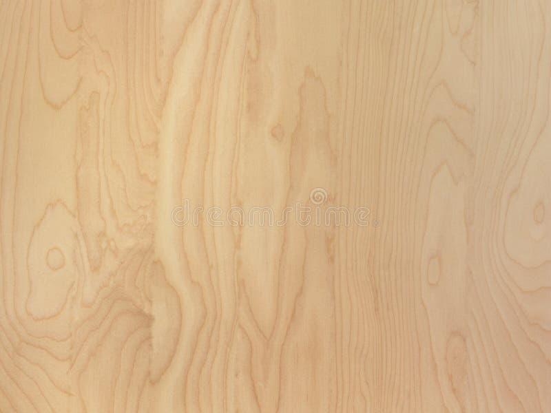 微妙的棕褐色的桦树木头五谷抽象背景表面 免版税库存照片