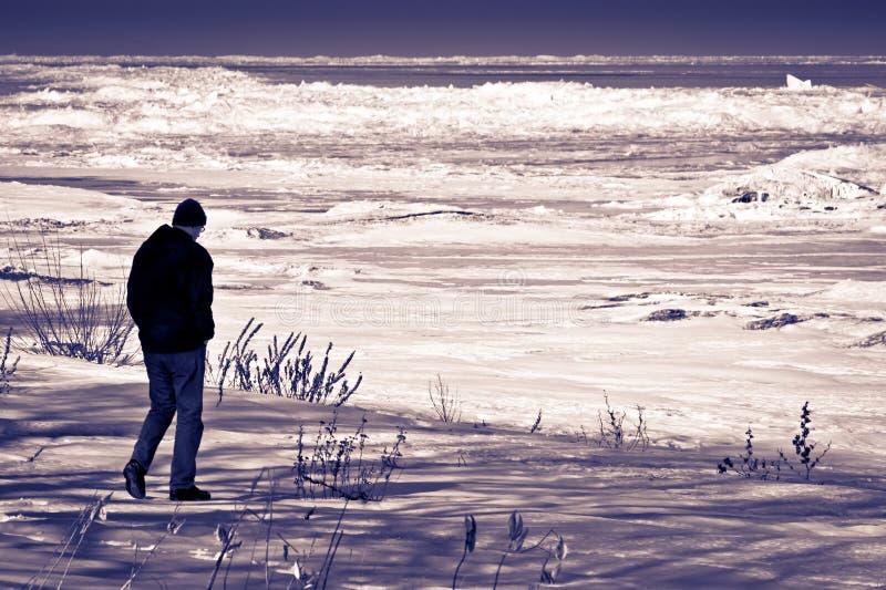 微暗的冬天海滩 库存照片