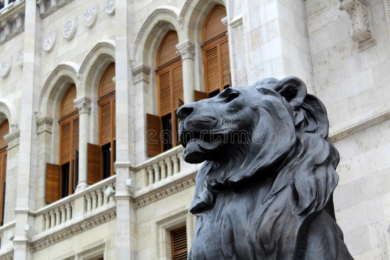 微暗的狮子 免版税库存图片