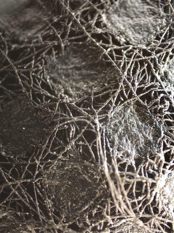 微看法纤维或织品1 库存图片