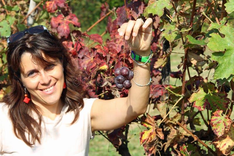 微笑与一束小的葡萄的美丽的妇女在秋天 免版税库存照片